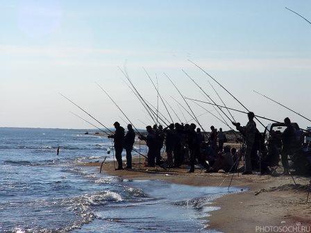 ловля кефали с берега в черном море