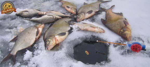 Ловля зимой на поплавок и коромысло